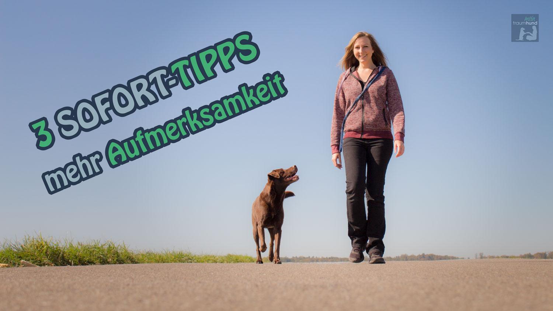 3 Tipps – mehr Aufmerksamkeit
