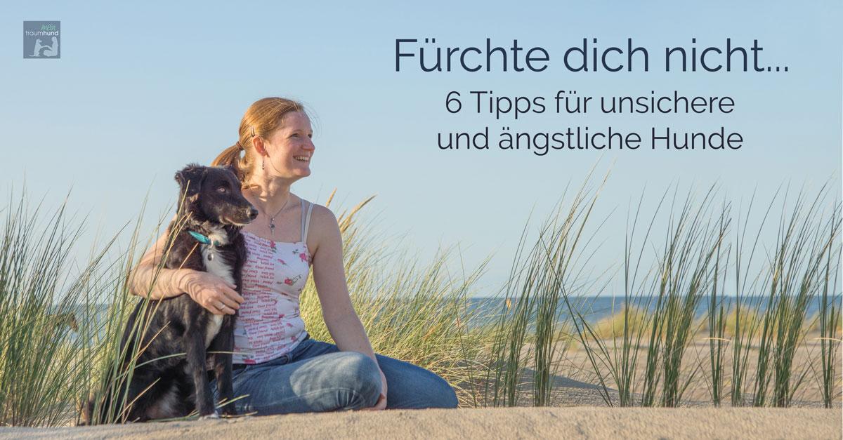 Anngsthund, Hundeerziehung, Hundetraining, Tipps