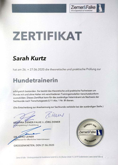 Sarah-Kurtz-Hundetrainer-Zertifikat-Ziemer-Falke-meintraumhund