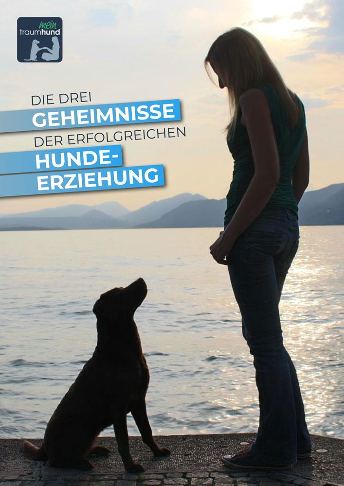 eBook Download: Die 3 Geheimnisse der erfolgreichen Hundeerziehung - meintraumhund